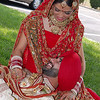Laddi & Gurpreet's Wedding : Wedding Photos